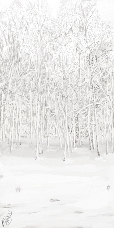 Russian Winter | VladaM | Digital Drawing | PENUP