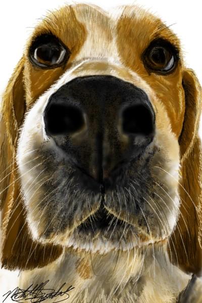 "Mandy Mae beagle ""smell that"" | mburdick | Digital Drawing | PENUP"