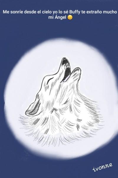 Mi Ángel Buffy♡  | Ivonne | Digital Drawing | PENUP