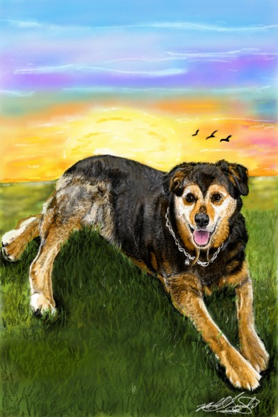friend's dog | mburdick | Digital Drawing | PENUP