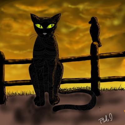 black cat   nyyankeehitman   Digital Drawing   PENUP