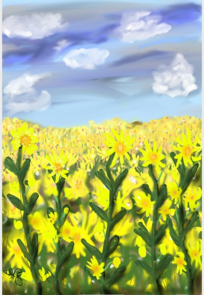 Field of Flowers | Jules | Digital Drawing | PENUP