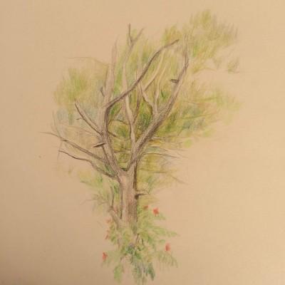 gardener | mahmood | Digital Drawing | PENUP