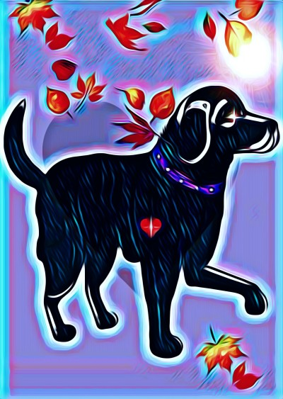 heart of a dog is love | SusieBrooklyn | Digital Drawing | PENUP