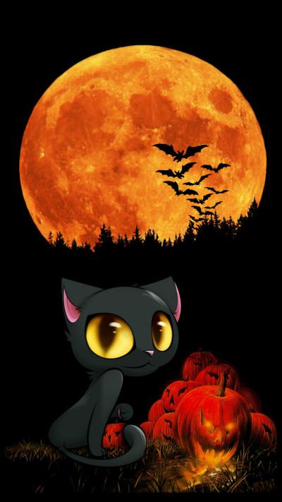 kitty Kat a night | frank | Digital Drawing | PENUP