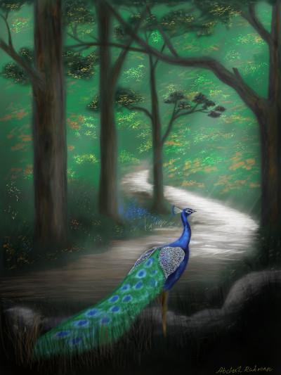 Peacock  | abdulrahman | Digital Drawing | PENUP
