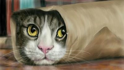 wrapping a cat ~^^ | akira | Digital Drawing | PENUP