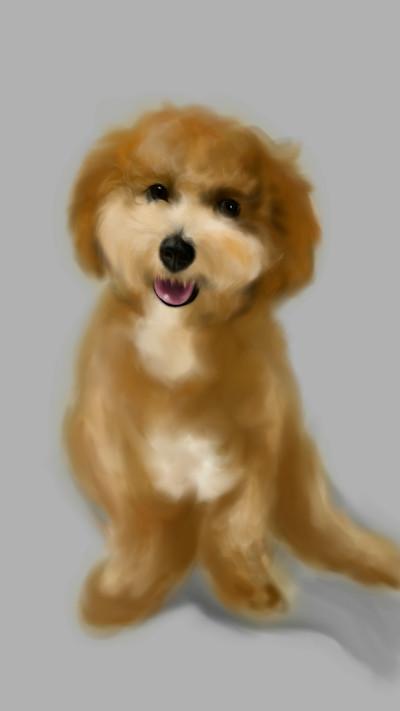 Smiling dog ~^^ | akira | Digital Drawing | PENUP