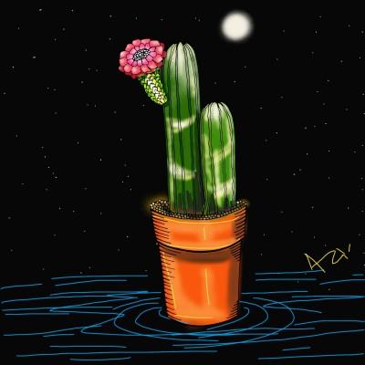 cactus | AZR | Digital Drawing | PENUP