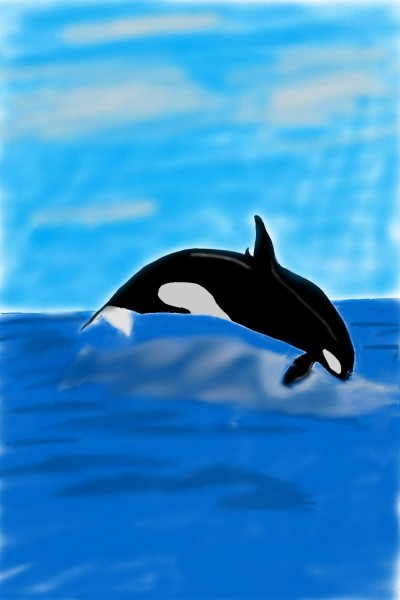Animal Digital Drawing | shaker.omr.g | PENUP