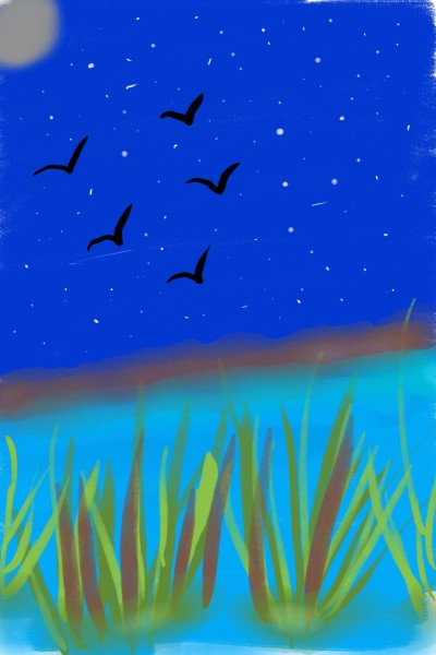 Night Flight | KarenC | Digital Drawing | PENUP