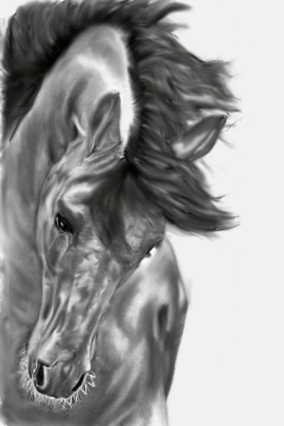 horse in pencil and rubbing    dusty   Digital Drawing   PENUP