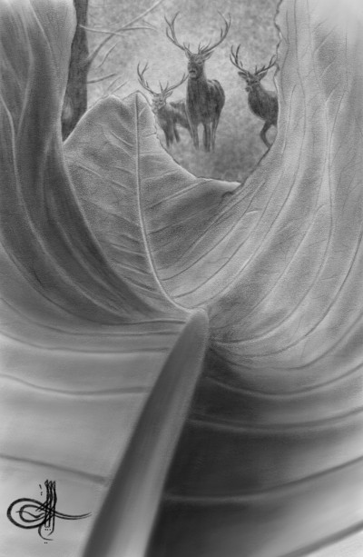 ♡Forest Animal  | Erkan-Beyatli | Digital Drawing | PENUP