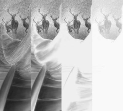 deer&forest | Erkan-Beyatli | Digital Drawing | PENUP
