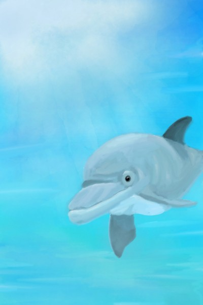 dolphin | yangchi | Digital Drawing | PENUP