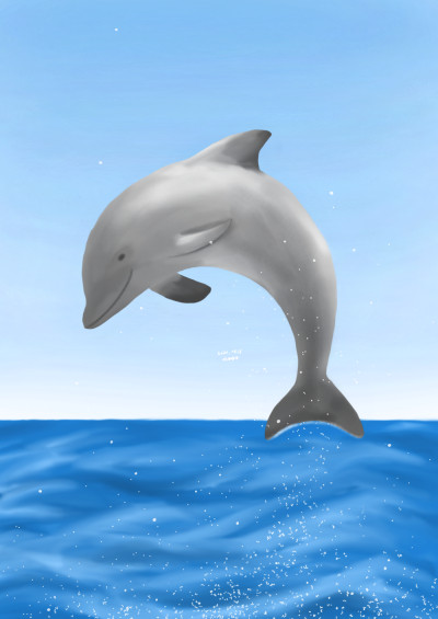 Dolphin | Cong.gee | Digital Drawing | PENUP