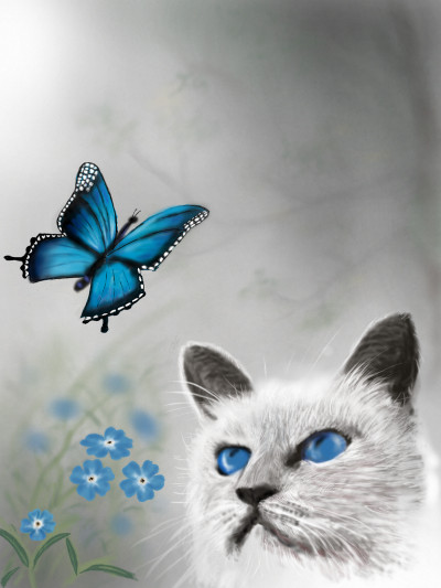 Butterfly & Cat | abdulrahman | Digital Drawing | PENUP