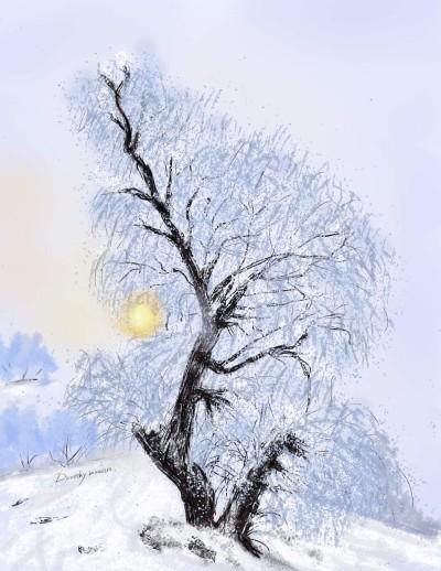 Winter  Tree    dorothy   Digital Drawing   PENUP