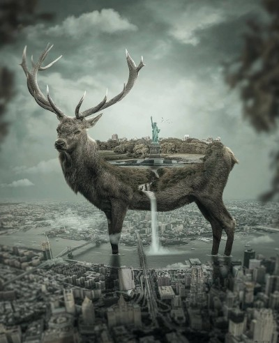Animal Digital Drawing | Mohamme | PENUP
