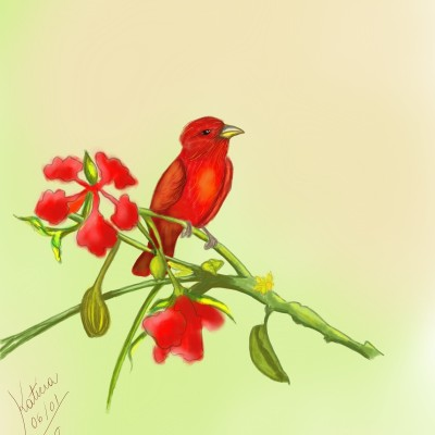 Animal Digital Drawing | Katicia | PENUP