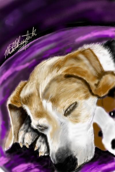 Our precious Snookie Beagle. RIP Sweet Angel. | mburdick | Digital Drawing | PENUP