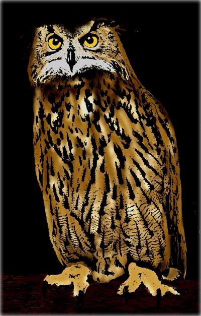 owl | Morejon | Digital Drawing | PENUP