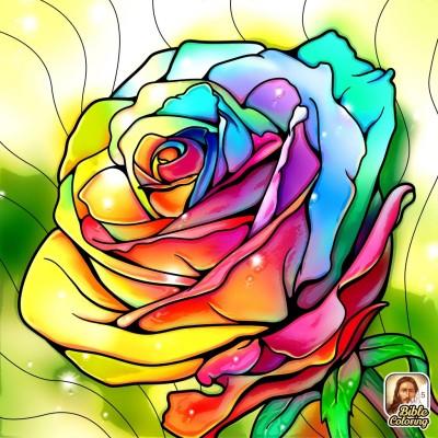 レインボ   ローズ | Gaycouple | Digital Drawing | PENUP