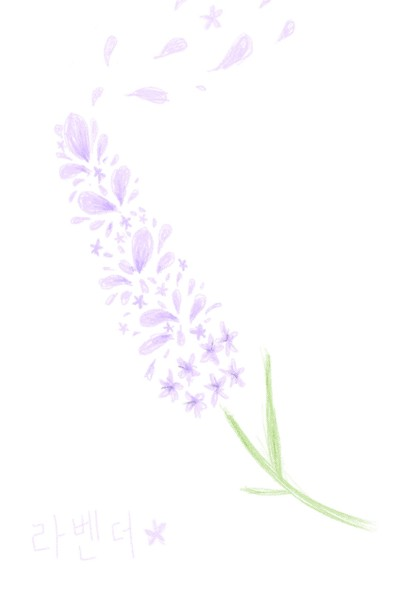 lavender | yangchi | Digital Drawing | PENUP