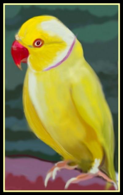 Yellow Bird by K.E.R | katherineeroach | Digital Drawing | PENUP