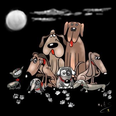 Gossos    Carme   Digital Drawing   PENUP