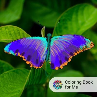 borboleta  | valsoares | Digital Drawing | PENUP