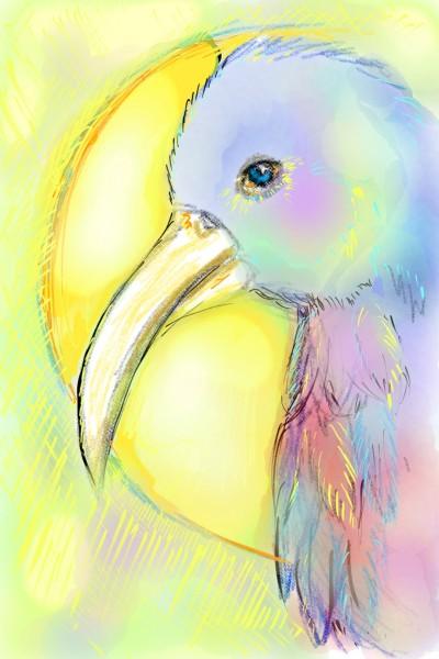 lets draw a bird   GreenRik   Digital Drawing   PENUP