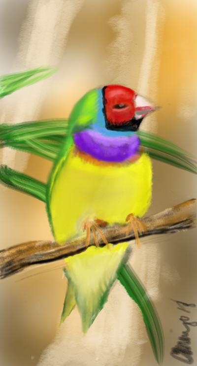 Bird challenge  | Cmingo417 | Digital Drawing | PENUP