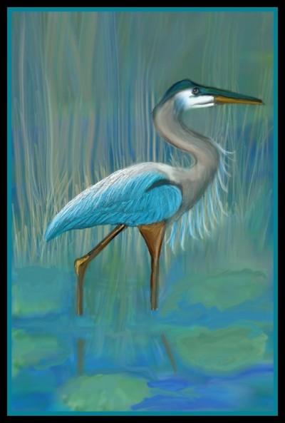 Blue Crane by K.E.R   katherineeroach   Digital Drawing   PENUP