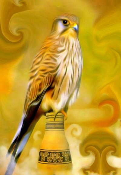Falcon | Denis | Digital Drawing | PENUP