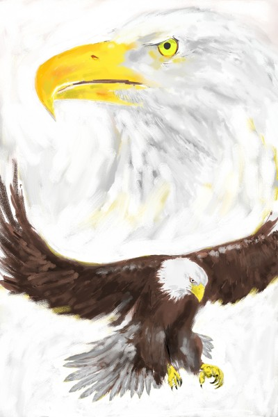 Let's draw bird challenge | CaineMoh | Digital Drawing | PENUP