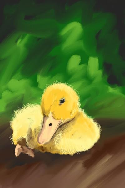 duck | Anarvin | Digital Drawing | PENUP