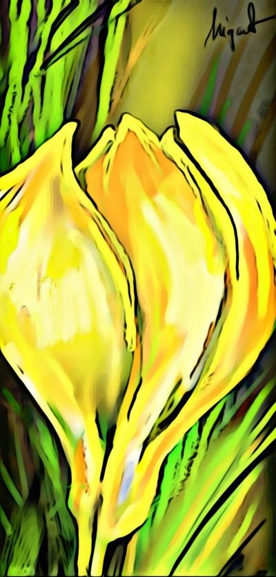 spring flower | Nigart | Digital Drawing | PENUP