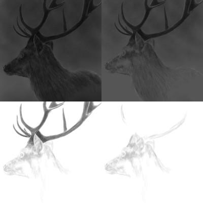 Deer in the mist | Erkan-Beyatli | Digital Drawing | PENUP