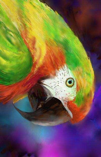 앵무새 | SSB | Digital Drawing | PENUP