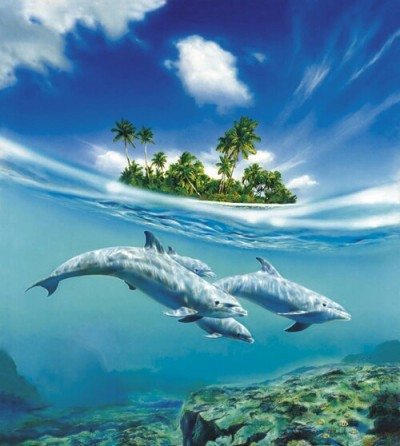 DOLPHIN'S FAMILY | nayaklcfr | Digital Drawing | PENUP