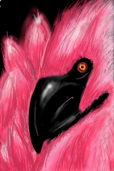 flamingo | alcourt25 | Digital Drawing | PENUP