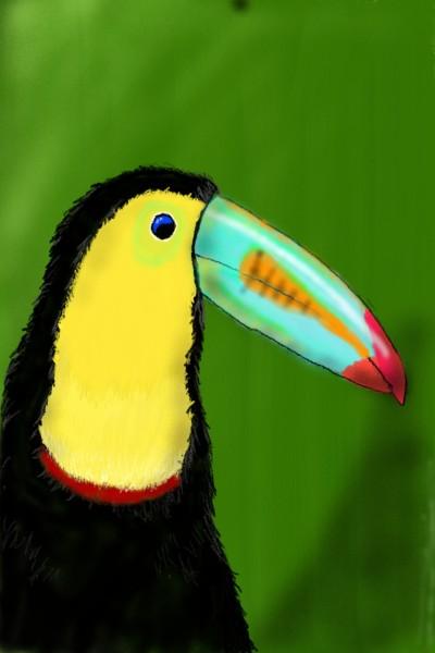 colorful bird | SkankaSin | Digital Drawing | PENUP