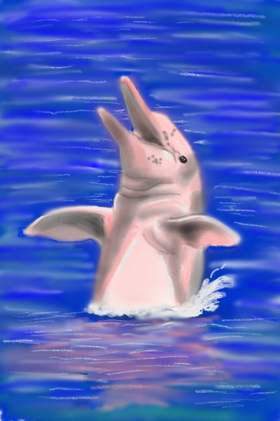 pink dolphin    mohsen   Digital Drawing   PENUP