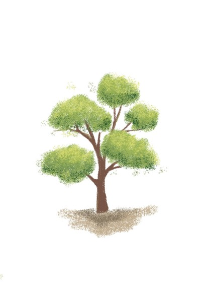 소나무   Jiyun   Digital Drawing   PENUP