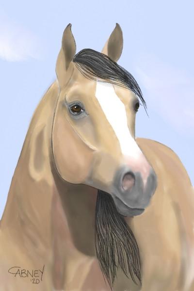 Animal Digital Drawing   shadowmare72   PENUP
