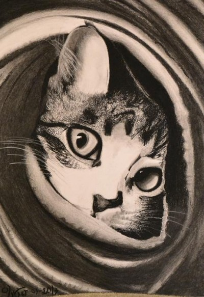 Cat's Eyes   artgraphit   Digital Drawing   PENUP
