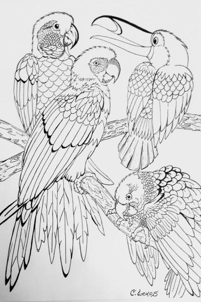 """The Birds"" | C.Lemos | Digital Drawing | PENUP"