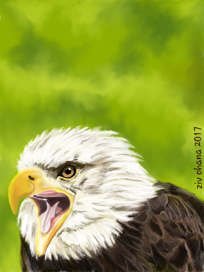 Animal Digital Drawing | zivzif | PENUP