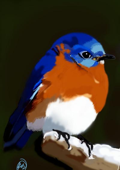 bluebird  | avictorias13 | Digital Drawing | PENUP